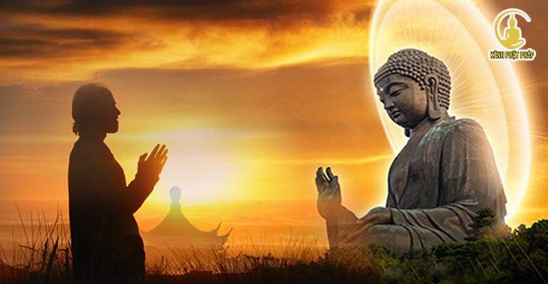 Sai lầm lớn nhất đời người là không biết cách khoan dung tha thứ
