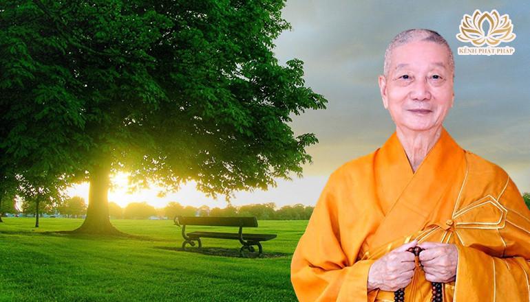 Làm sao để định hướng cuộc đời tìm đến an lạc - Thầy Thích Trí Quảng