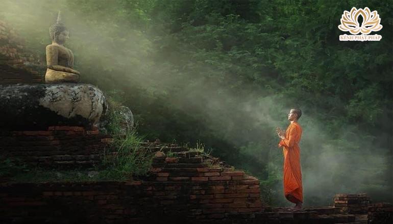 Nghiệp qua ẩn dụ sâu sắc theo lời Phật dạy